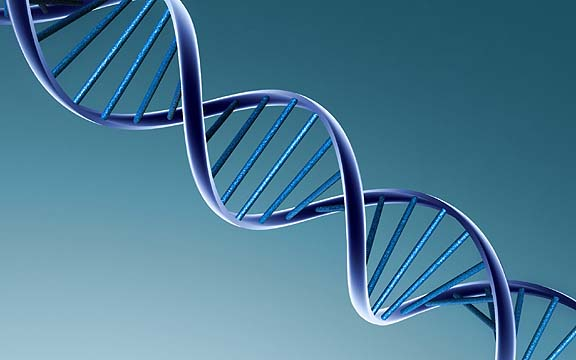 a role of molecular biology in our life Why is biology so important and how can it help us in our daily life.